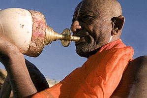 Turbinella - Hindu priest blowing a trumpet made out of a large shell of Turbinella pyrum, in Tirupati, India