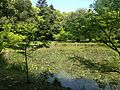Hishigataike Pond in Usa Shrine 2.JPG