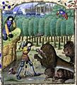 Histoires de Troyes - Nemeian Lion.jpg