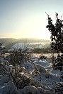 Hlubočky - panoramio - Tomas Lollky (8).jpg