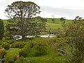 Hobbiton, The Shires, Middle-Earth, Matamata, New Zealand - panoramio.jpg