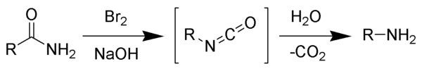 Hofmann Rearrangement Wikipedia