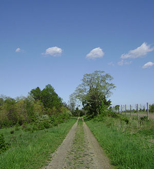 Holmdel Township, New Jersey - Steeplechase Trail, Holmdel Park