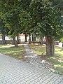 Holy Trinity church in Wysiedle-10.jpg
