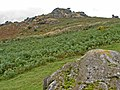 Honeybag Tor - geograph.org.uk - 935862.jpg
