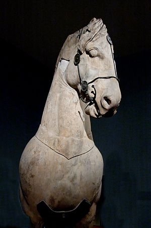 On Horsemanship - A Greek statue showing the bitting and bridling system