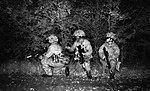 Household Cavalry Regiment on Ex Iron Scout 3 on Salisbury Plain. MOD 45161833.jpg