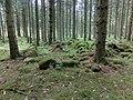 Husgrund efter sommarladugård i Bäckagårdens mark (RAÄ-nr Sörby 102) 2336.jpg