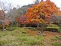 Hyakusaiji Kocho, Higashiomi, Shiga Prefecture 527-0141, Japan - panoramio (5).jpg