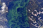 ISS-44 StoryOfWater, Looks like aurora in a lake, Ukraine.jpg