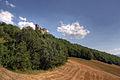 Il castello (2726969971).jpg