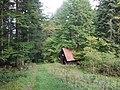 Im Steintal bei Lautenbach (Gernsbach)1.jpg