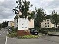 Infosys limited Zurich Switzerland ( Ank Kumar ) 15.jpg