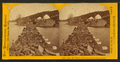 Iron Ore Train of 45 cars crossing Goose Lake, by Carbutt, John, 1832-1905 2.png