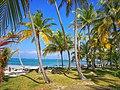 Isla Tortuga (Morrodub) Cayos Holandeses, San Blas, Panamá .jpg