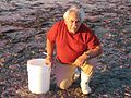 Jack Rudloe collecting at low tide 270-1.JPG