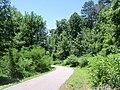 Jamestown, VA, USA - panoramio (8).jpg