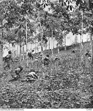 Battle of Bukit Timah - Japanese troops assaulting Bukit Timah hill, under Allied fire.