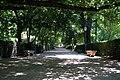 Jardin Botanico (7) (9376519935).jpg