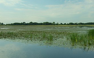 Ramsar sites of Poland - Drużno Lake