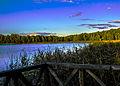 Jezioro Wigry (2).jpg