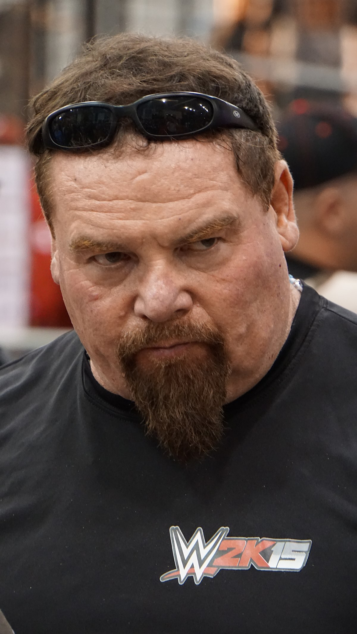 jim neidhart - photo #1