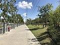 Jinhai Road on west side of Jinji Road Station.jpg