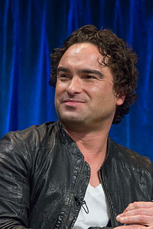 Johnny Galecki 2013.