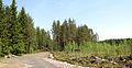 Jyväskylä - Huhtasuo.jpg