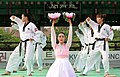 KOCIS Korea Taekwondo Namsan 18 (7628122224).jpg