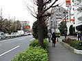 Kakinokizaka slope 2.jpg