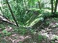 Kaniv Nature Reserve (May 2018) 76.jpg