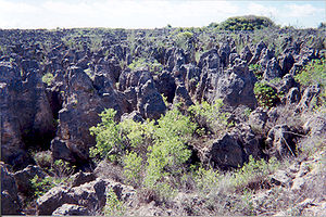 Land degradation - Serious land degradation in Nauru after the depletion of the phosphate cover through mining
