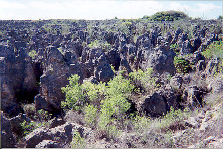 Serious land degradation in Nauru after the depletion of the phosphate cover through mining Karst following phosphate mining on Nauru.jpg