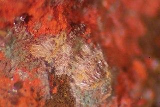 Kenhsuite Halide-sulfide mineral