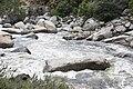 Kern River2.jpg
