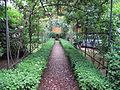 Khi florenz, giardino 06.JPG