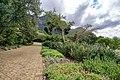 Kirstenbosch Botanical Garden-3128.jpg