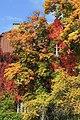 Klagenfurt Tarviser Strasse 96 herbstliche Villa 07102008 1182.jpg