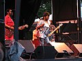 Koko Taylor at Pgh Blues Festival.jpg