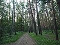 Kotelniki, Moscow Oblast, Russia - panoramio (125).jpg