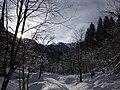 Kronhofgraben im Winter.jpg