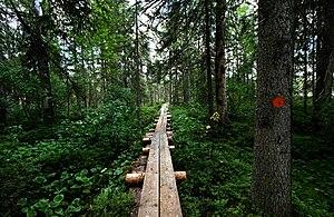 Petkeljärvi National Park - Image: Kuikan kierros