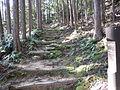 Kumano Kodo Dainichigoe World heritage36.JPG