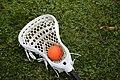 Lacrosse stick 8024.jpg