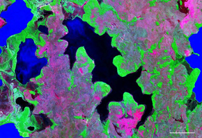 Laguna Larga Bolivia Satellite map 65.75365W 12.png