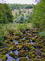 Landscape of Bjelusa - 7408.CR5.jpg