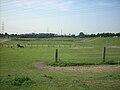 Landschaft südlich vom Duisburger Ortsteil Serm 008.jpg