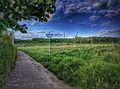 Landschaftsschutzgebiet Am Ginsterberg.jpeg