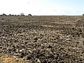 Large ploughed field near Egdon - geograph.org.uk - 1015220.jpg